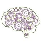 Brain gear 20 procent